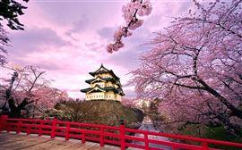 Tour du lịch Nhật Bản: Tokyo - Phú Sỹ - Toyohashi - Kyoto - Osaka